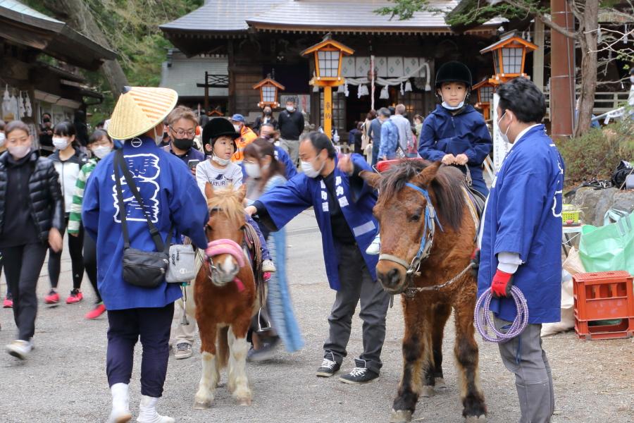 新倉富士浅間神社:馬